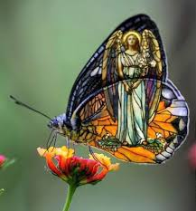 God and Butterflies